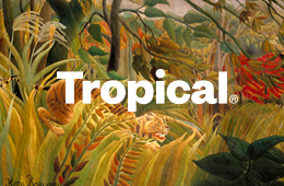 Tropical Estudio Diseño Zaragoza